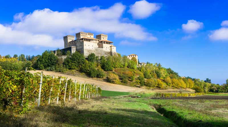 Vineyards and castles of Italy - Torrechiara (near Parma)