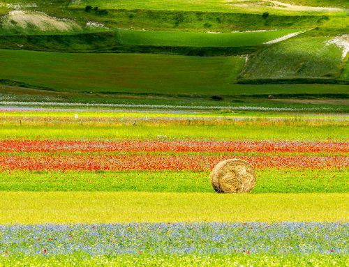 Umbria : a relaxed escape in Italy's Green Heart